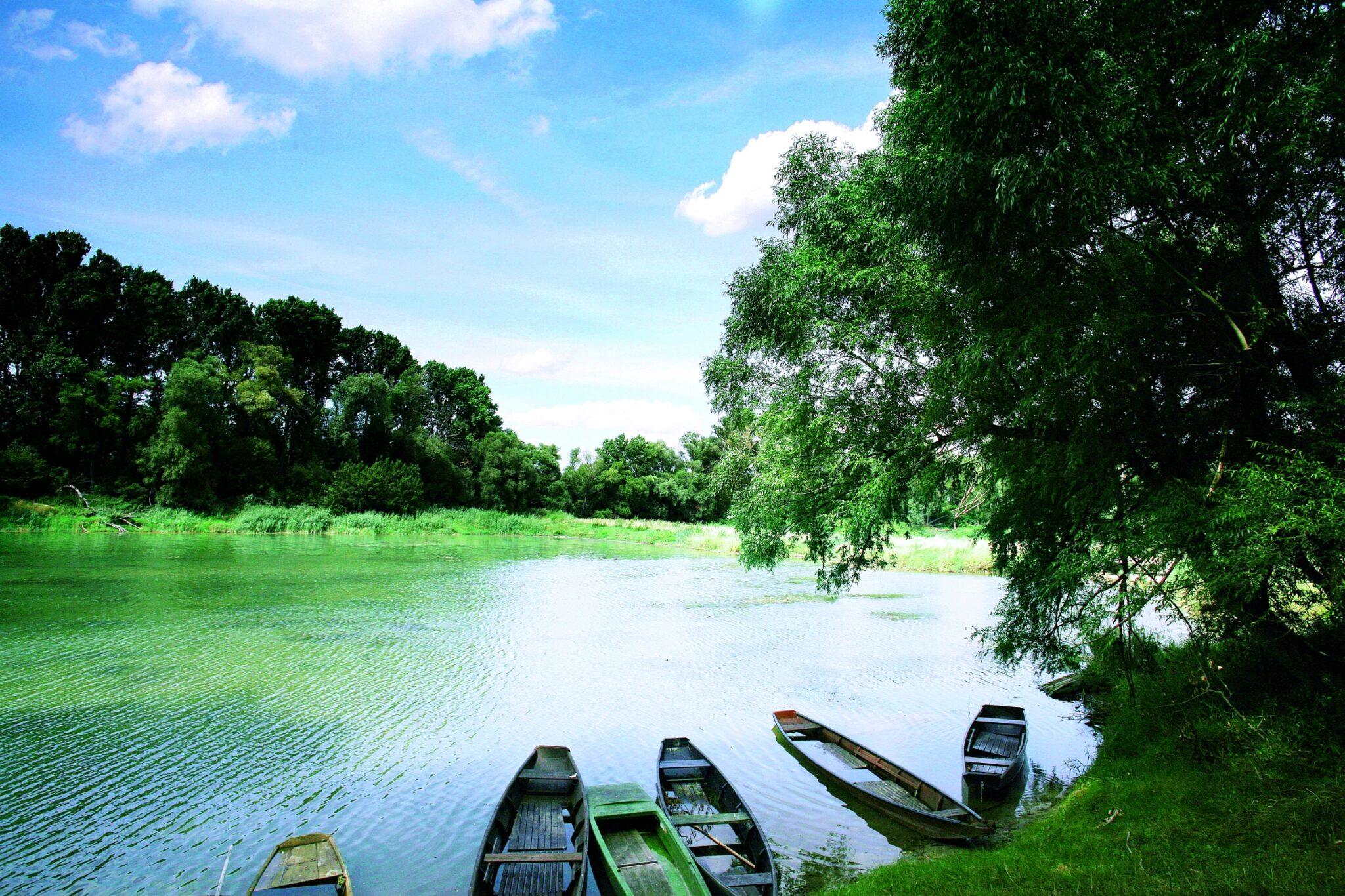 Das Bild zeigt ein Gewässer in der Lobau, dem Wiener Teil des Nationalparks Donau-Auen. Am Ufer ist dichter Baumbestand zu sehen, im Vordergrund liegen einige Holzboote im Wasser. © Jürgen Staudacher